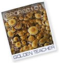 Golden Teacher- print