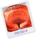 Reishi   - Edible Culture