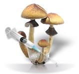 Spores101 Spore Syringes